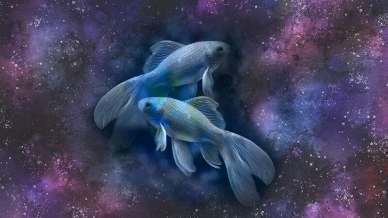 como ver constelacion piscis