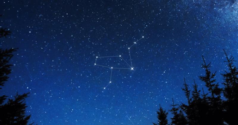 constelacion de grus