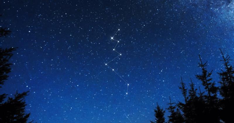 constelacion de lacerta