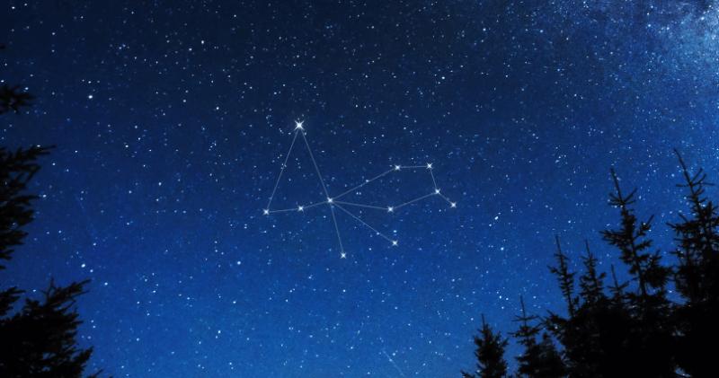 constelacion de pavo